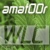 amat00r - zdjęcie