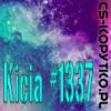 Kicia #1337